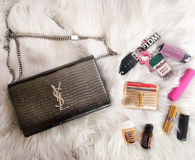 fashion bloggers handbag