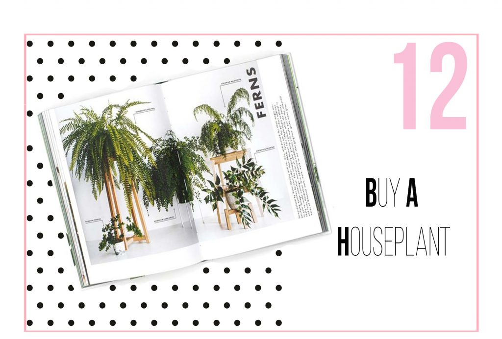 Tips for dealing with stress - Buy a houseplant