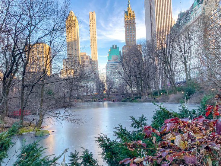 My East Coast trip: visiting Central Park