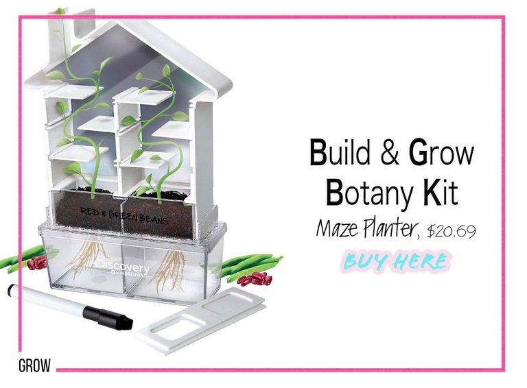 DIY Crafts: Build & Grow Botany Kit