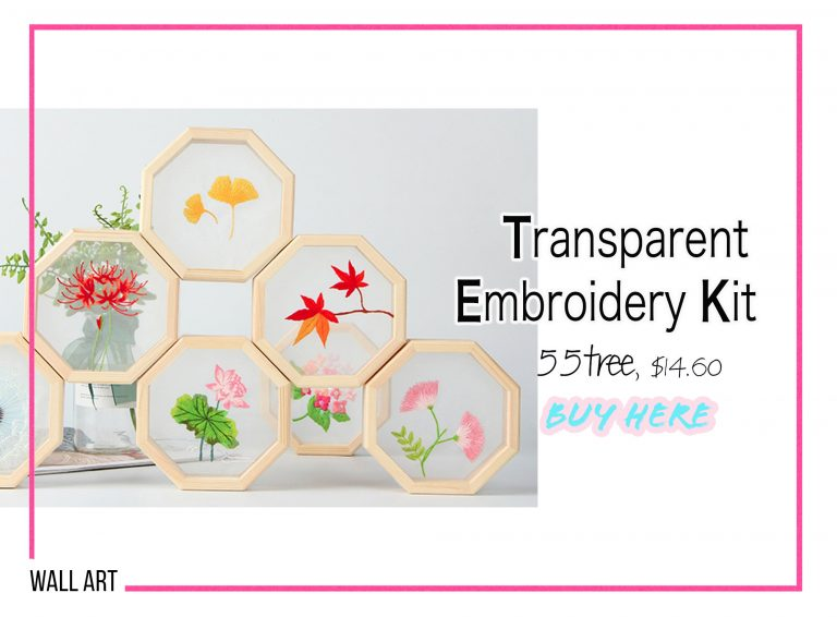 DIY Crafts: Transparent Embroidery Kit