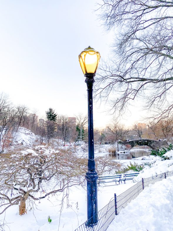 Christmas in NYC: Central Park after a blizzard