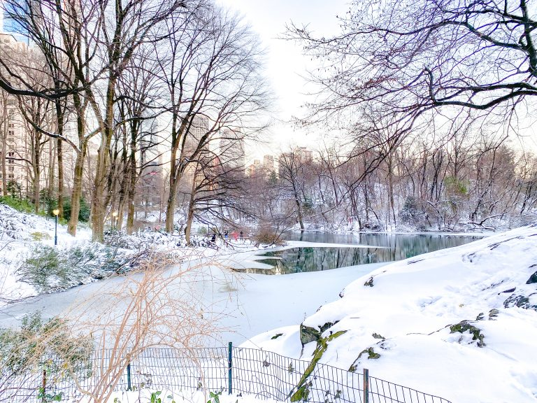Christmas in NYC: Central Park covered in snow