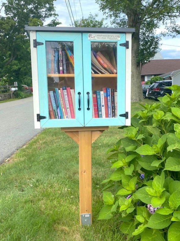 Memories of the summer: Little Free Library